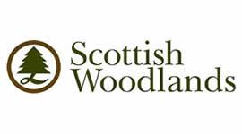 scottish_woodlands-1
